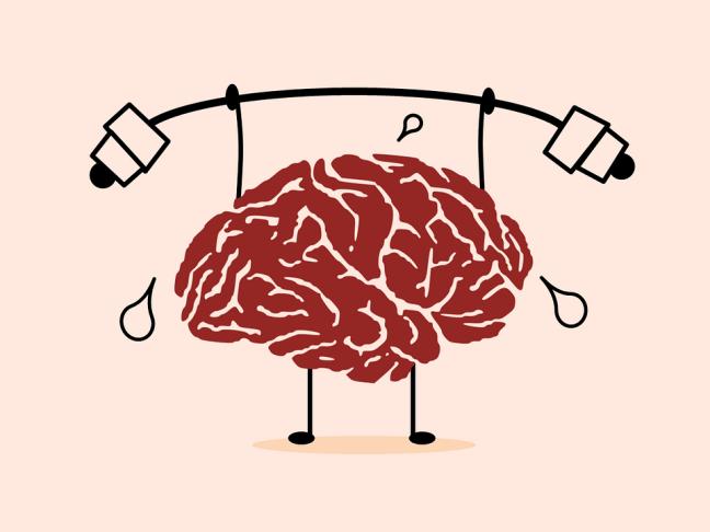 cerebro entrenando FINAL